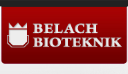 Belach-logo_v2